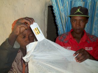 Government Mosquito Nets