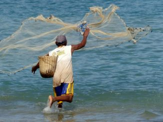 Use of mosquito nets for Fishing
