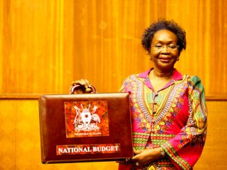 The politics behind the 2014/2015 budget
