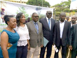Impala, gorilla monuments to cost KCCA Shs 400m
