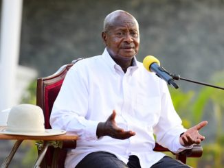 Can legal committee stop Uganda's age limit amendment?