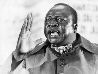 Idi Amin becoming politically sexy?