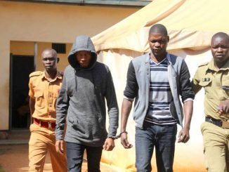 Socialite Bryan White accused of attempted murder released on bail