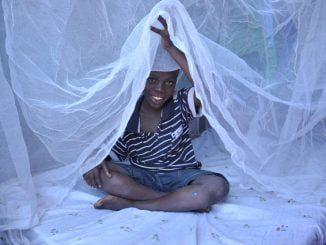 World Malaria Day: Can Africa get out of the disease trap?
