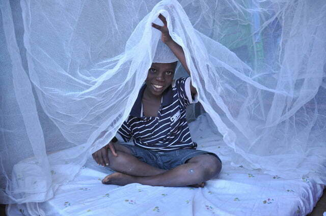 World Malaria Day 2018 – Mosquito Net