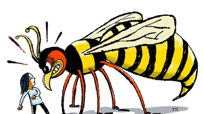 Wasps kill American tourist in Bwindi Impenetrable National Park