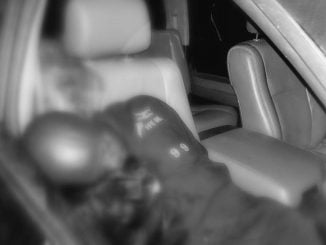 Bobi Wine's driver shot dead in Arua