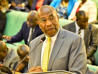 Gen. Kayihura being handled according to military procedures – Rugunda