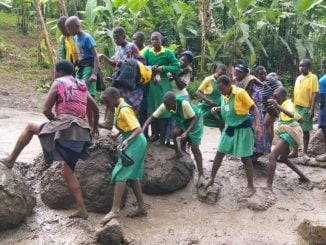 Mount Elgon disasters need action, not talk