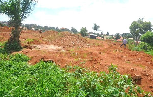 More than 4,000 residents face eviction from Entebbe wetland