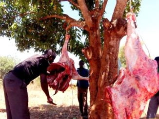 Meat prices drop to Ugx 1,000 per kilogram as dry spell hits Nakasongola