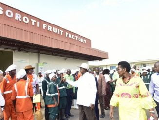 President Museveni advises Teso farmers to abandon cotton, grow fruits