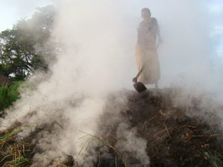 Charcoal burning sending Ugandans to the grave - Environment Minister
