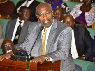 Minister Nantaba not under house arrest - Premier Rugunda