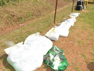Uganda police destroy narcotic drugs worth UGX 4 billion